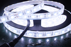 Waterproof LED Strips